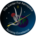 Aerospace Nursing Excellence Logo Patch 1 Idea II